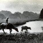 Peter Granser, Vietnam